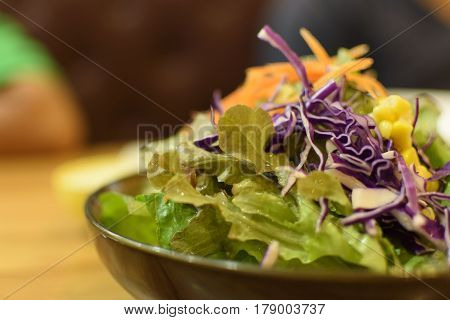 Salad Vegetables in Plate on table and stillife.