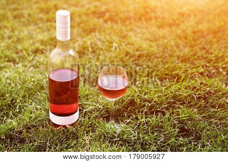 One glass and bottle of red or rose wine in vineyard in green grass. Harvest time, picnic, fest theme