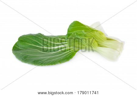 baby bok choy or chinese cabbage leaf on white background