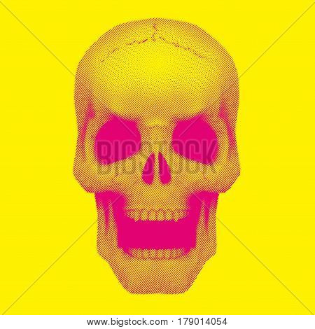 Human skull in vintage duotone and halftone sketch style. Art Illustration