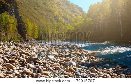 Fast mountain river with the purest water in Altay mountains, Siberia, Russia