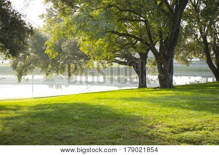 View of lake , trees and beautiful light