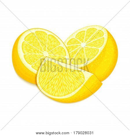 Vector composition of a citrus lemon fruits. Yellow lemon whole and cut . Group of tasty ripe tropical fruit, designer elements for packaging juice breakfast health food, tea