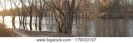 High Water. The Trees Stand In The Spring In The Water