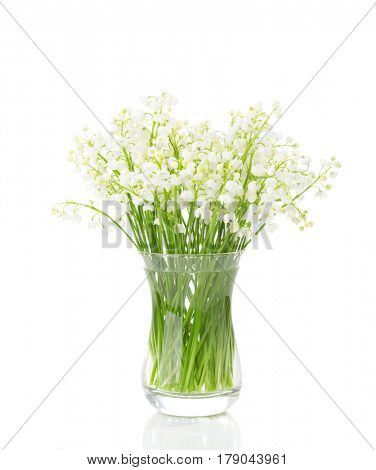 Bouquet of Lilies of the Valley isolated on white background.
