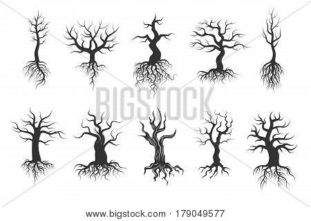 Old tree vector silhouettes with roots vector set. Black silhouette tree trunk with root, illustration of dry tree