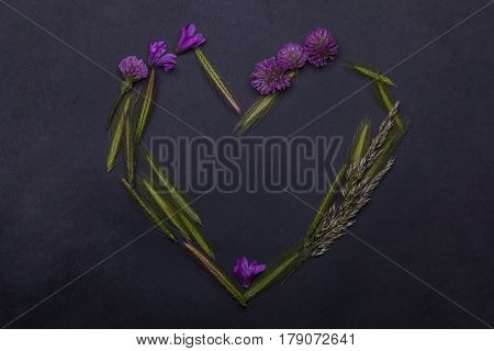 beautiful spring flowers violet color with spikelet green grass floral seasonal blossom design in heart shape on grey background copy space
