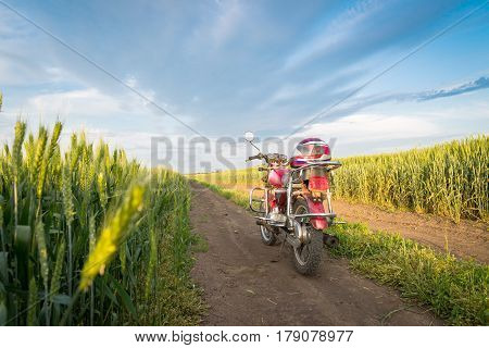 Summer landscape road, wheat field, motocycle and blue clouds
