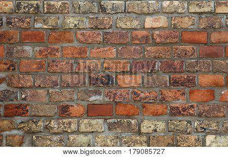 diferent colors brick wall with mortar betwen bricks