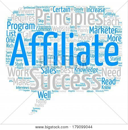 The Principles of a Successful Affiliate Marketer text background word cloud concept