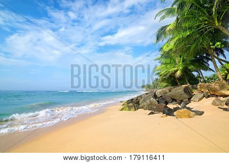 Stones and palm trees on a sandy beach of Gala in Sri Lanka