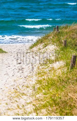 Sandy path through the green dunes to the blue sea