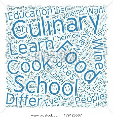 Things You ll Learn In Culinary School text background word cloud concept