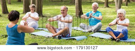 Elder People On Yoga Class In The Park
