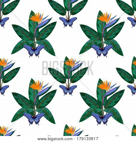Seamless Pattern with tropical flowers and leaves of strelitzia and butterfly isolated on white background. Tropic floral wallpaper.