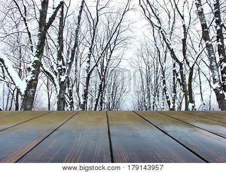 wooden boards with winter landscape with trees in the snow
