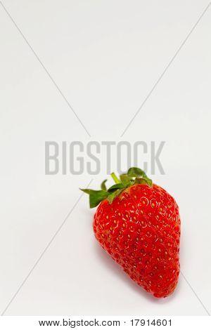 Solo Strawberry