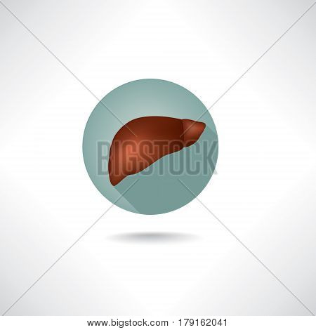 Liver icon. Human anatomy web buttons set.