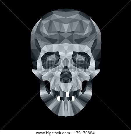 skull vector death skeleton dead head illustration danger human symbol