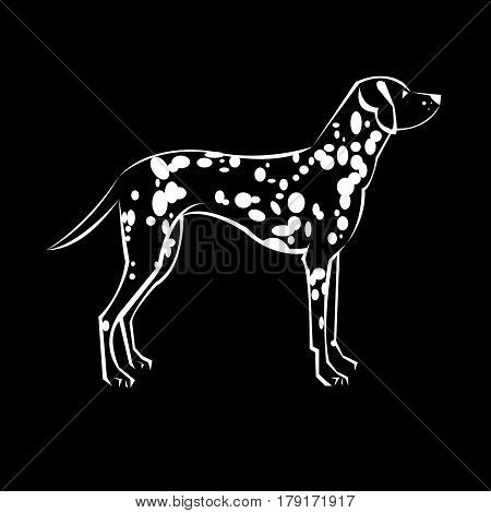 dalmatian vector animal illustration mammal background white pet dog cartoon