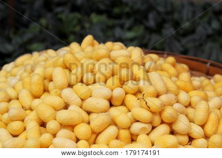 Travel To Bangkok, Thailand. Yellow Cocoons Of The Silkworm In A Basket Closeup On A Fabric Of Thai