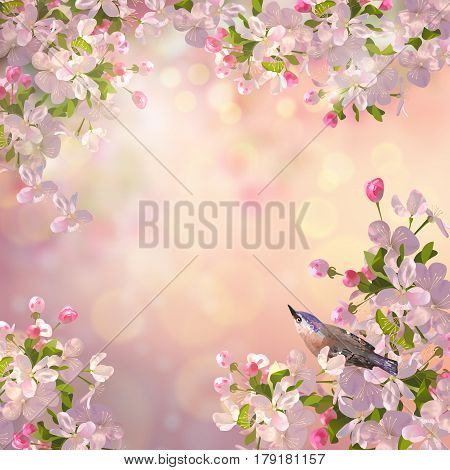 Vector background with spring Apple blossom and a bird. Blooming tree branch in springtime