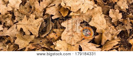 A compass under dry oak foliage in the spring forest a landmark for tourists and people who like to go hiking
