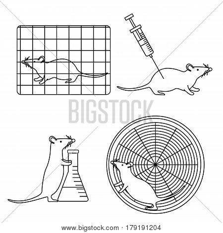 Mouse In Lab Experiments Set