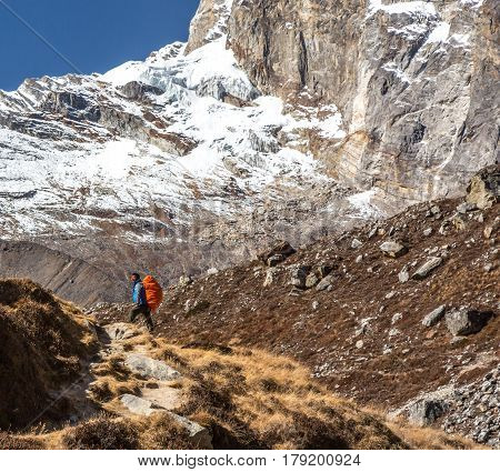 Iconic Portrait of Nepalese professional Mountain Guide staying on Footpath and looking up at high Altitude Summits carrying red Backpack and alpine climbing Gear
