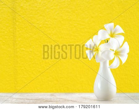 white plumeria flowers in white ceramic vase on wooden floor with yellow cement wall background, tropical flowers bloom summer for home decoration