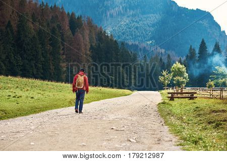 Rearview of a young man wearing a hiking jacket and a backpack walking along a path to the forest and mountains