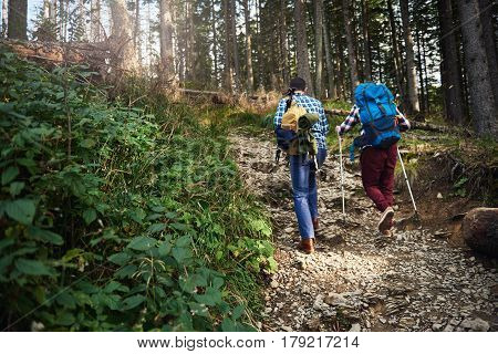 Rearview of two young men wearing backpacks and carrying trekking poles hiking together up a rocky trail in the forest