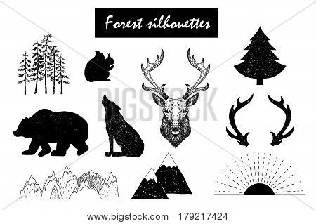 Hand drawn vector forest silhouettes. Wild and free design elements.