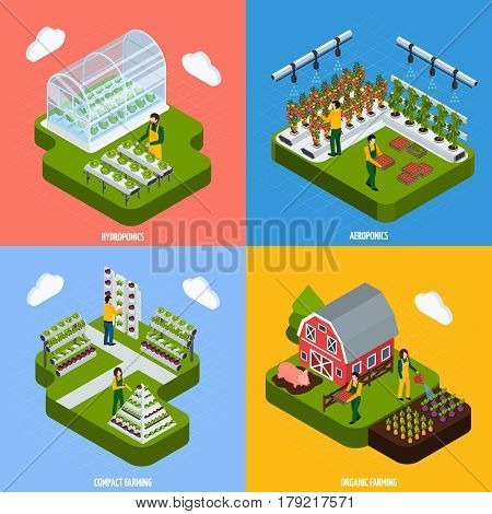 Hydroponics and aeroponics concept isometric icons set with farming symbols isolated vector illustration