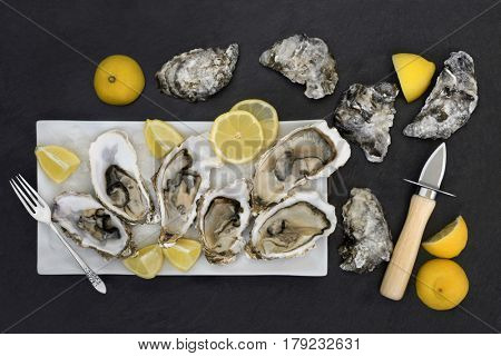 Oysters on crushed ice with oyster knife, old silver fork and lemon fruit on a porcelain plate on slate.