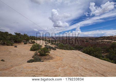 A view of the Arizona stone desert landscape, USA