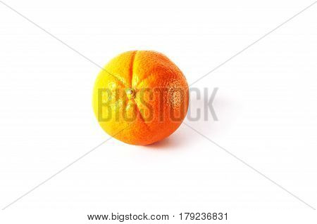 Round useful orange on a white background