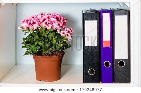 White office shelf with folders and pelargonia flower