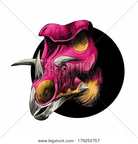 the head of a dinosaur breed of Triceratops peeks out from behind the black circle color image color pink and yellow