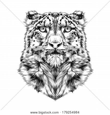 the head of the snow leopard full face symmetry black and white drawing sketch vector graphics
