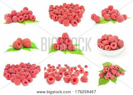 Collage of rasp berry on a isolated white background