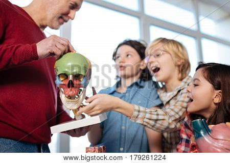 Tell us more. Observant admirable motivated students asking a lot of questions while the teacher using a plastic model explaining skull anatomy