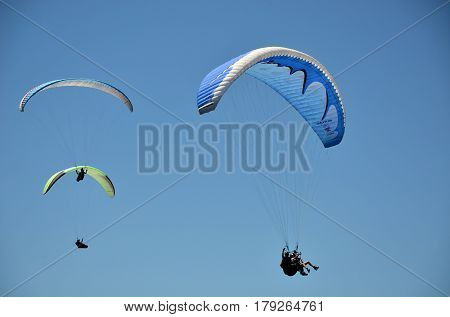 February 13, 2017. Two single and one tandem paragliders soaring through blue sky at the popular tourist destination of Stanwell Tops, New South Wales, Australia.