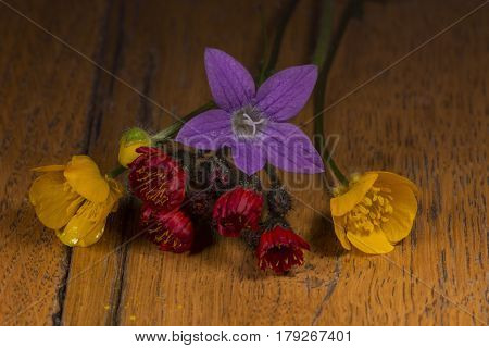 Small wild flowers isolated on wooden table