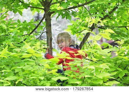 active childhood - caucasian blonde little girl climbing the tree