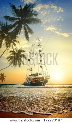Beautiful ship in ocean near coast with palm trees
