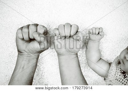 Black and white portrait of fathers, mothers and their babys fists next to each other.