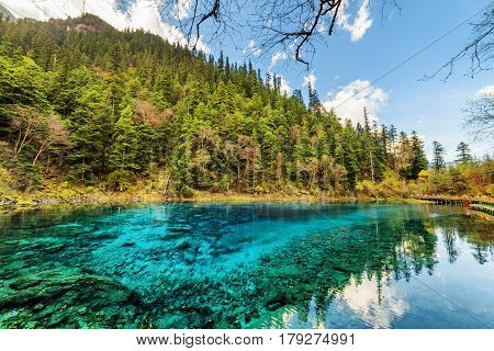 Beautiful View Of The Five Coloured Pool (the Colorful Pond)