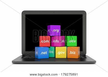Internet Domain Names