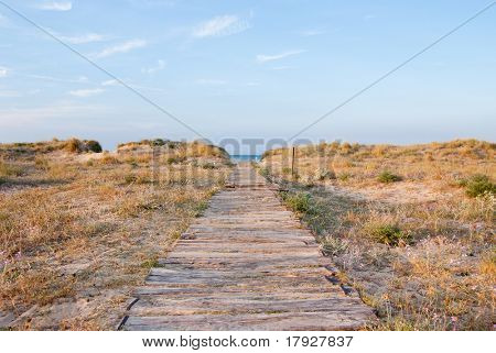 Boarded path leading to the beach with predawn light